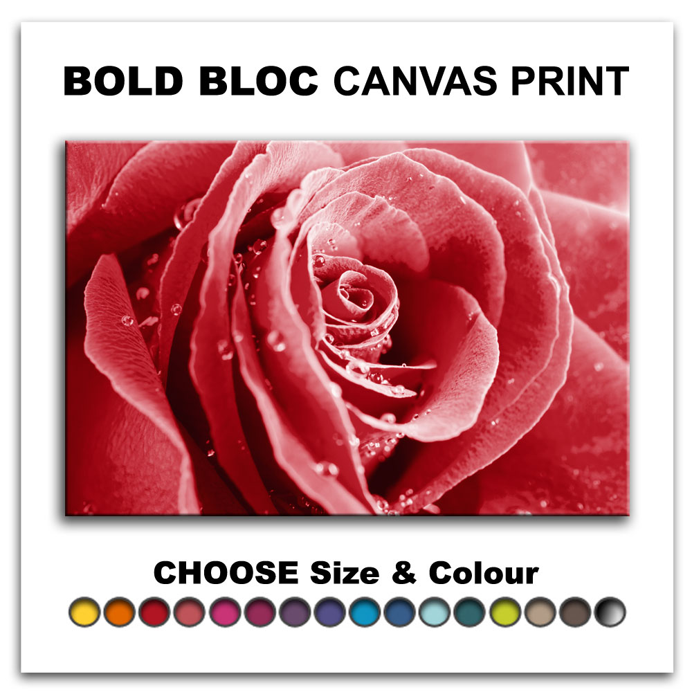 Rose Flowers Love FLORAL  Canvas Art Print Box Framed Picture Wall Hanging BBD