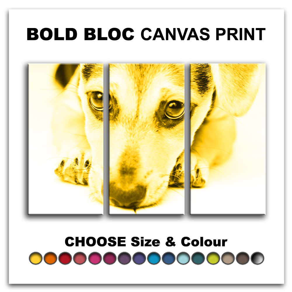 Puppy Dog Pet ANIMALS Canvas Art Print Box Framed Picture Wall ...