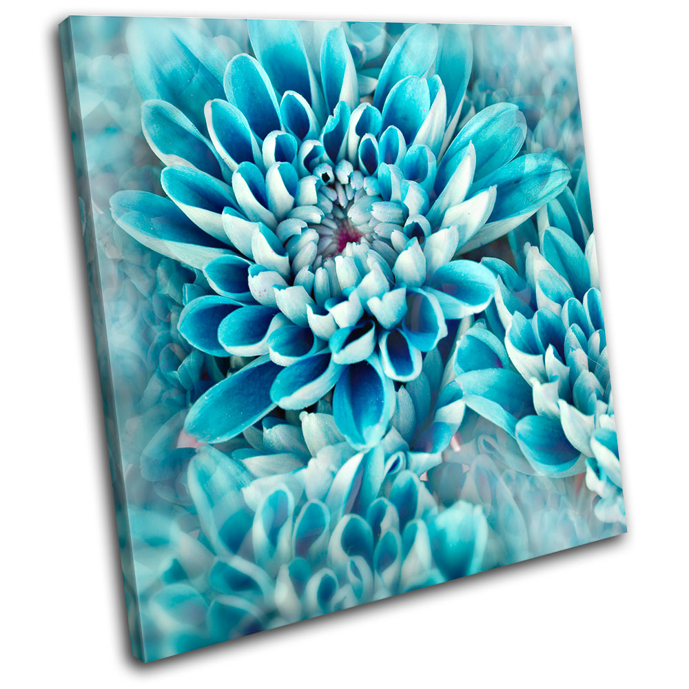 Teal Canvas Wall Art zinnia blue flower floral single canvas wall art picture print va