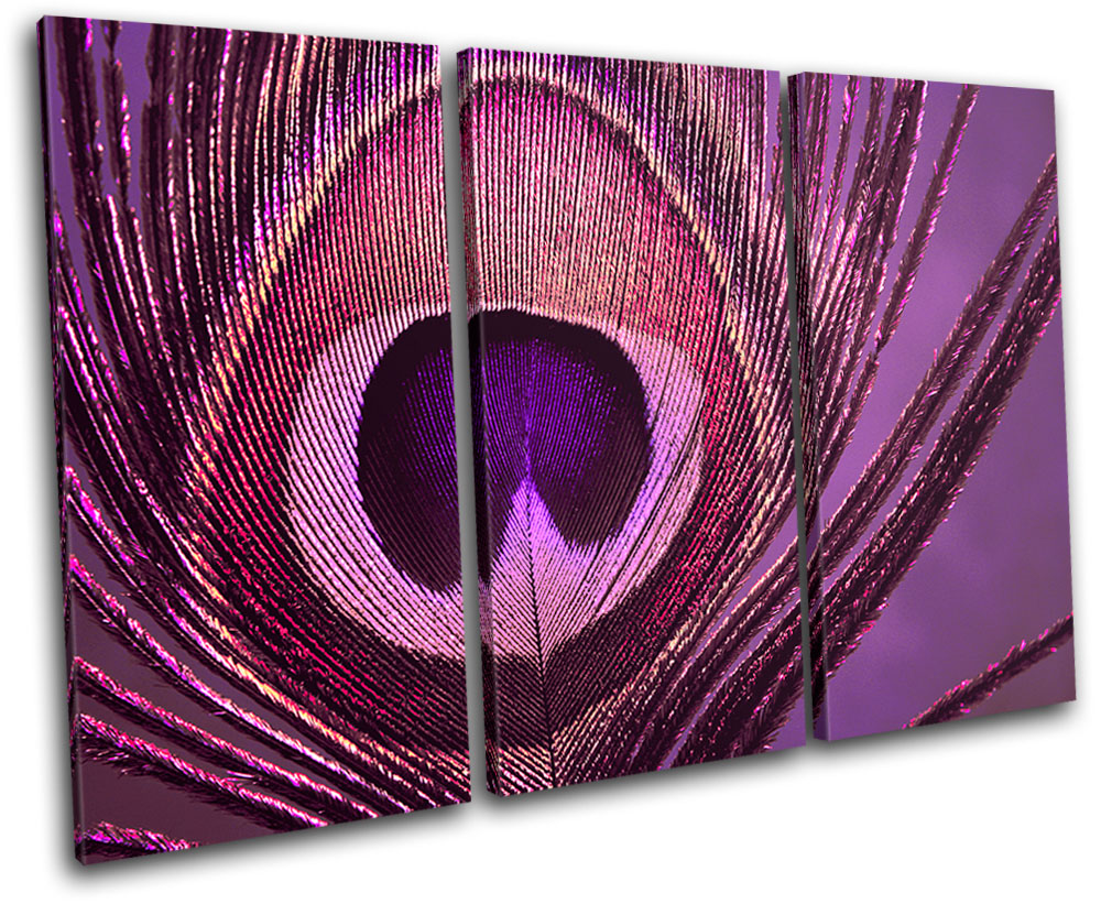Peacock-PURPLE-PINK-Abstract-TREBLE-CANVAS-WALL-ART-Picture-Print-VAAbstract Peacock Wall Art
